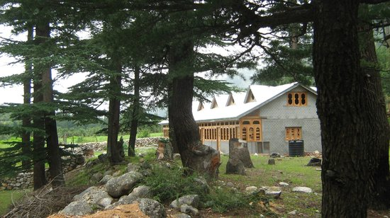 Apple Orchard Farm and Camping : Wood and Stone Cottage