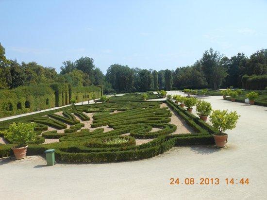 Il giardino alla francese picture of reggia di colorno - Giardino francese ...