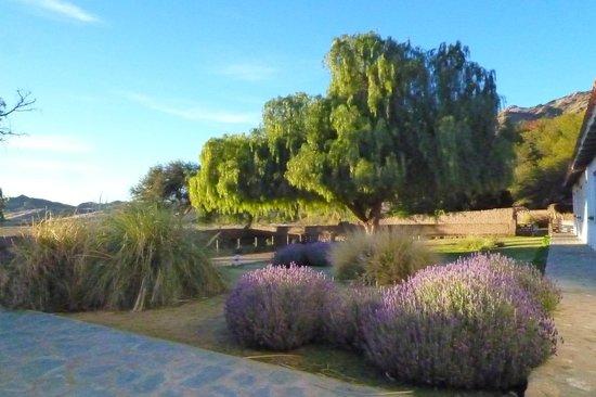Hacienda de Molinos: Vista de la habitación