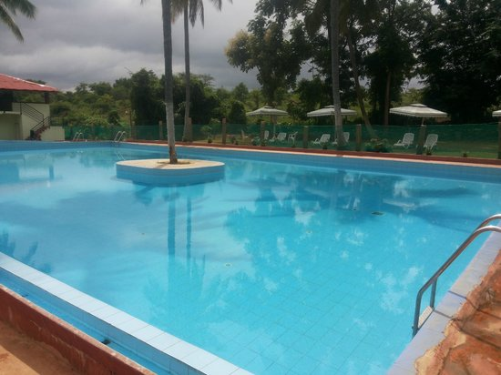 Pool Picture Of Elim Resort Bengaluru Tripadvisor