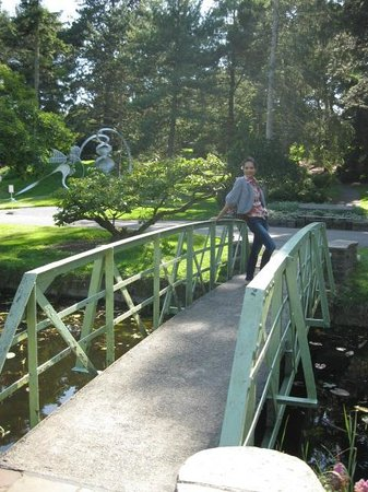 National Botanic Gardens: Little Bridge In The Garden