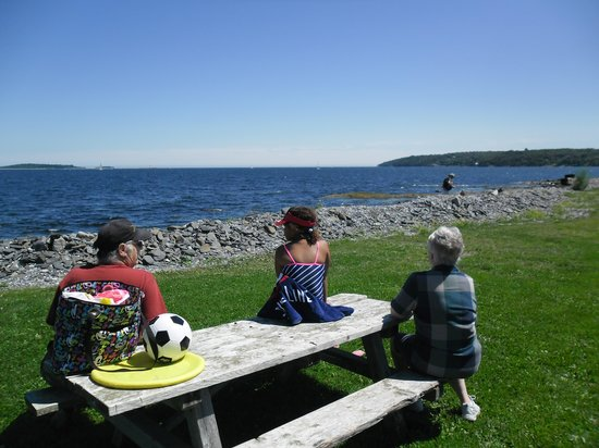 Point Pleasant Park: Enjoying the view