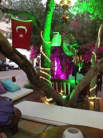 Cafe Vita Restaurant : cafe vita ottoman area