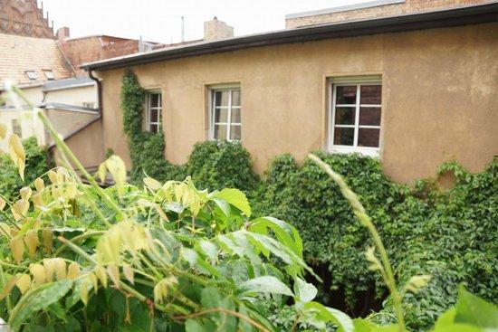 Zum Goldenen Stern: View from our window