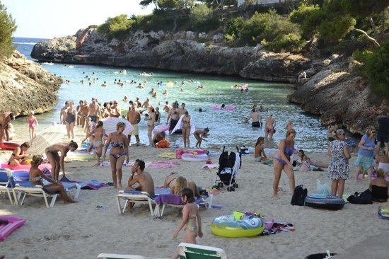 PrimaSol Cala d'Or Gardens: The beach at Cala Egos.