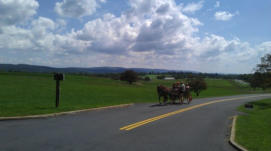 ‪Bonnymeed Farm - Antietam Horse & Carriage Guided Tours‬
