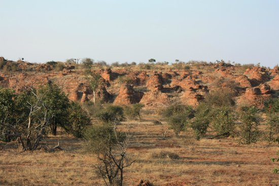 Mapungubwe National Park: View from Leokwe Camp