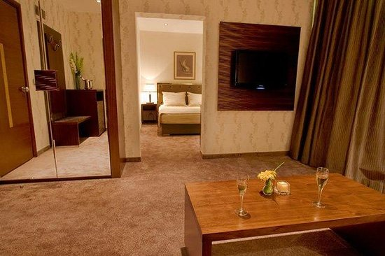 Vitosha Park Hotel : Executive Studio