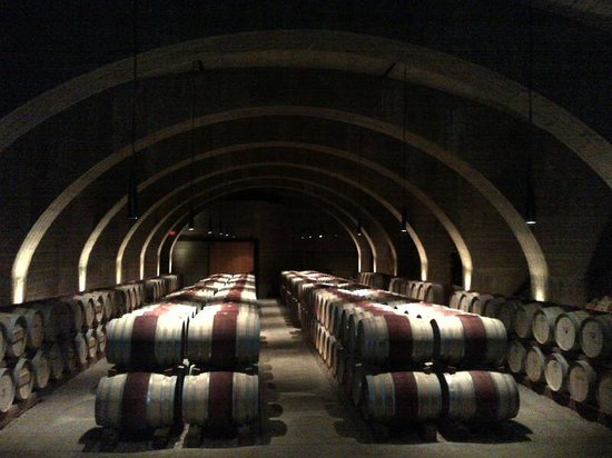 Terrace Restaurant : Wine Cellar