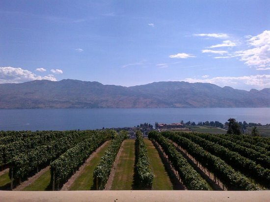 Terrace Restaurant : View of Okanagan Valley From Restaurant