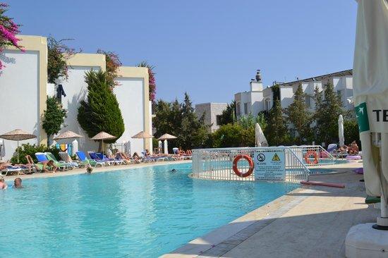 Hotel Serpina: zwembad vanaf het terras gezien