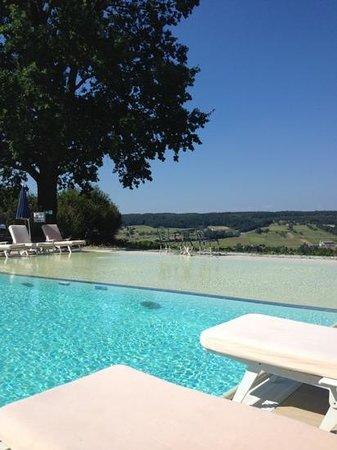 Hotel & Spa Der Steirerhof : Pool