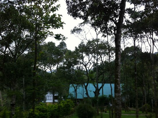 Niraamaya Retreats Cardamom Club - Thekkady: View of the main area from our cottage