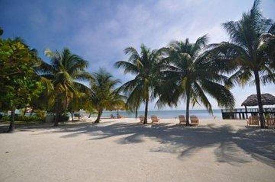 St. George's Caye Resort: Beach View