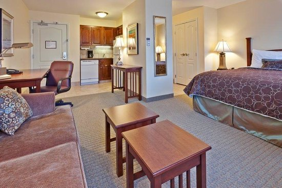 Staybridge Suites Indianapolis - Carmel: Studio Suite. Perfect space to get comfortable and relax.