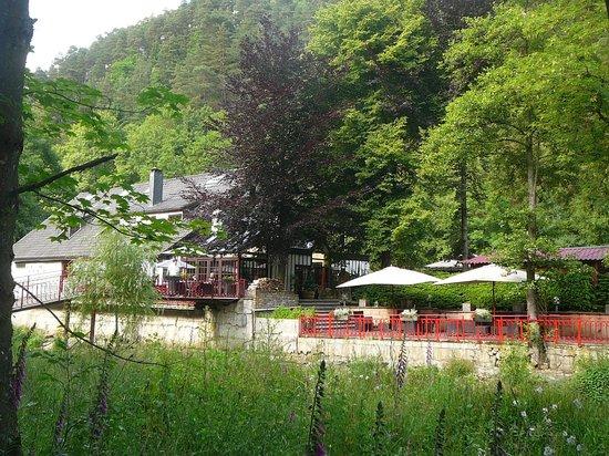 Les Linaigrettes: Rustig gelegen in de Ardennen.