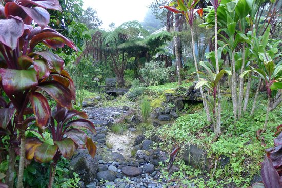 Volcano Guest House: Garden Path
