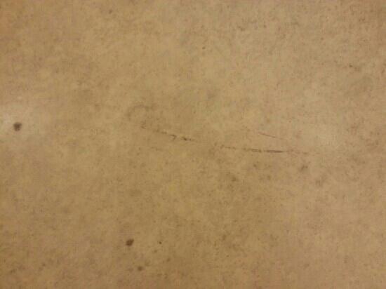 TLH Carlton Hotel: dirty shabby bathroom floor its fowl