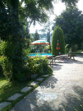 B&B Pietra Salara : Giardino - Particolare piscina