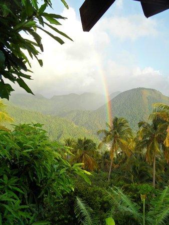 Crystals St Lucia: rainbow