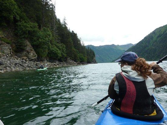 Kachemak Bay State Park: Kayaking