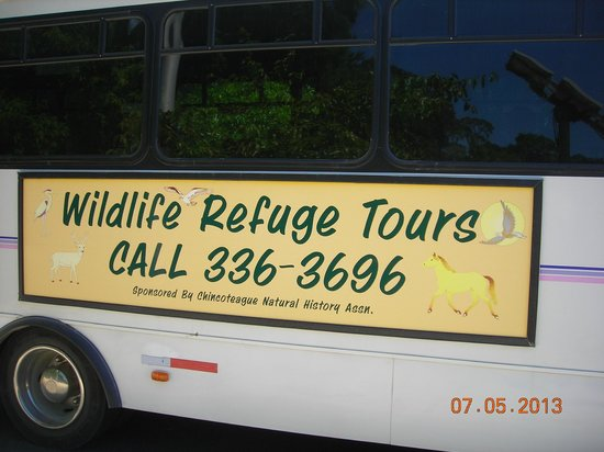Chincoteague Natural History Association  Wildlife Tour : Name & contact info of bus tour