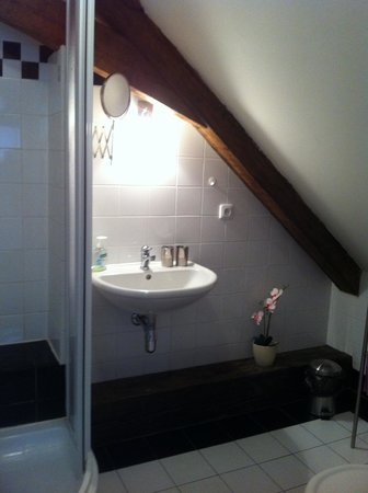 Residence Porta Aurea: Sink, shower, toilet. Towels and blow dryer are provided.