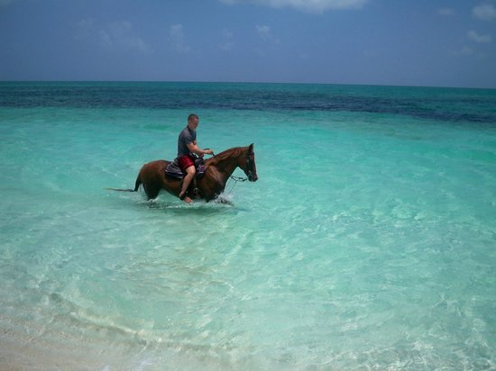 Atlantic Ocean Beach Villas : Caicos Corral - Riding on Beach in front of Villa