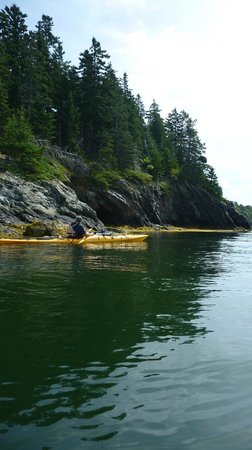 Maine State Sea Kayak: Corky along the shoreline geology.