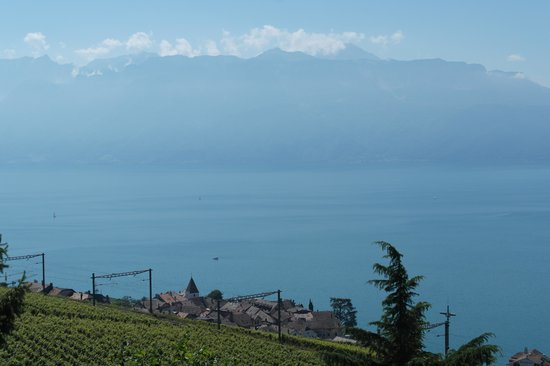 Villa Lavaux Boutique B&B: View from our bedroom at Lavaux
