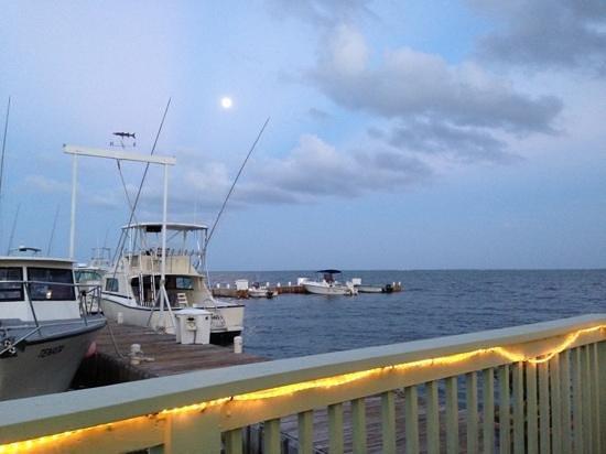 Morgan's Harbour : Moonlight dinner