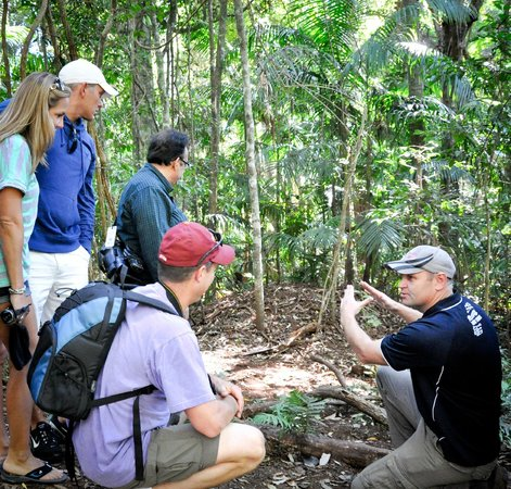 Fully Guided Rainforest Tour