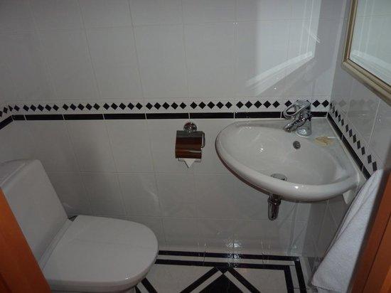 Radisson Blu Ridzene Hotel: Pequeno banheiro