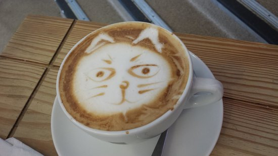 The Beached Lamb Cafe: Animal Latte