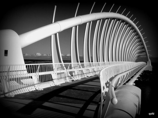 New Plymouth, Nya Zeeland: Te Rewa Rewa Bridge