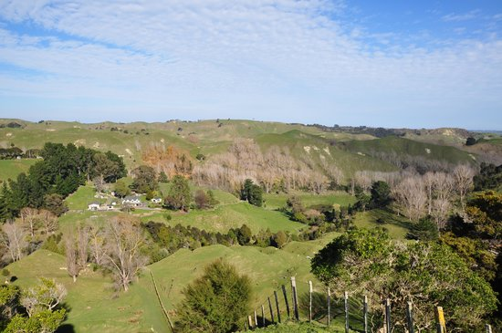 Rangitikei Farmstay: A view of the house from the picnic bench at the top of the very nice walk.