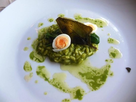 Spinach risotto with quail egg