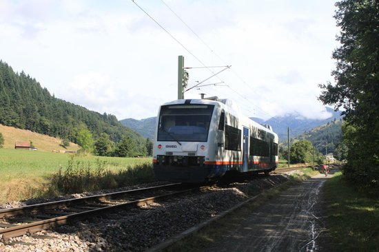 Campingplatz Muenstertal : The local train that stops at the site