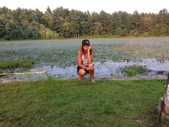 On Cranberry Pond Bed and Breakfast: en el lago atardece