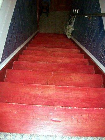 Hayden's Wexford House: Première série d'escalier