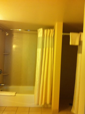 Hilton Garden Inn Washington DC / Greenbelt: bath tub and shower stall