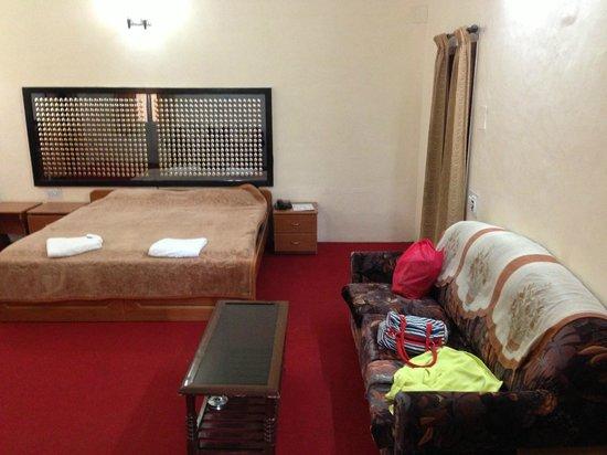TTDC Hotel: Penthouse - Main room!