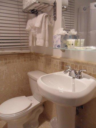 South Beach Plaza Villas : Banheiro