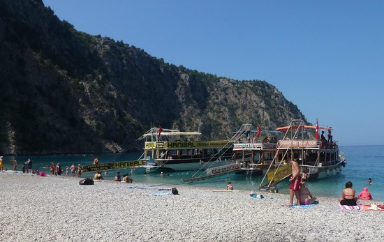 Cherry Tree Boat Tours / Day Tours: At Butterfly Valley