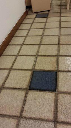 Fiesta Bahia Hotel : Brennand's tiles