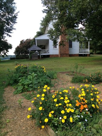 House in the Horseshoe: Alston house grounds