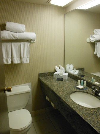 Clarion by Choice Hotel and Conference Centre: bathroom