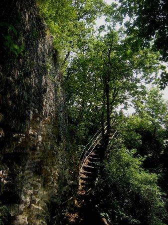 Parco del Castello di Verde 사진