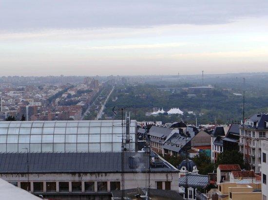 El Rincon de Gran Via: Vista da sacada - Madrid