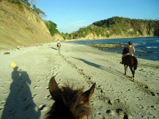 Horsejungle: Un dimanche a playa Barco Quebrada